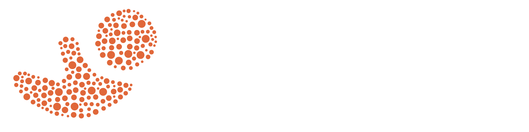 INC - Infant Nutrition Council